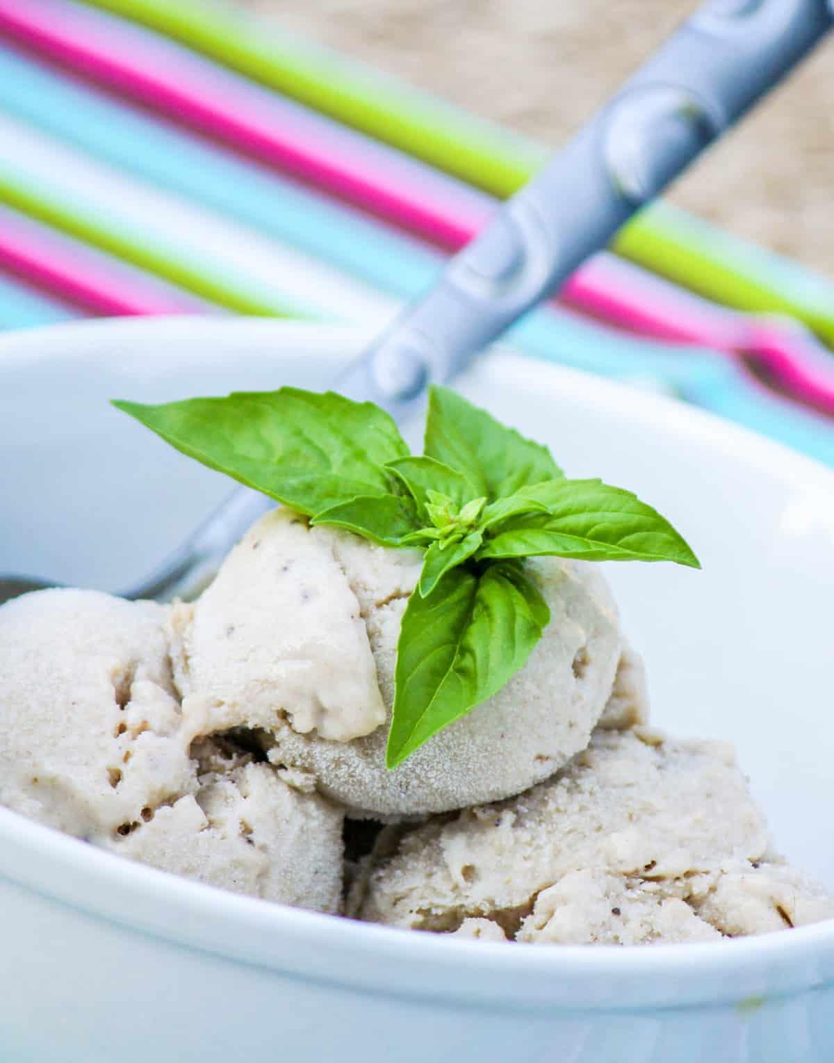 Roasted Banana and Coconut Ice Cream