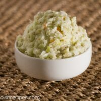 Homemade Coleslaw { Non Sweet } Recipe