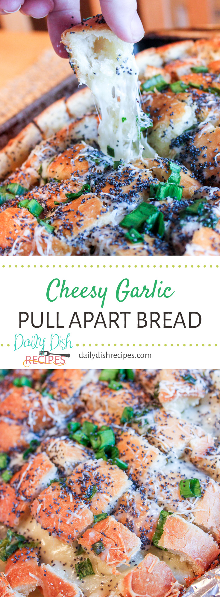 A beautiful Cheesy Garlic Pull Apart Bread - easy to make, tastes like a burst of heaven in your mouth and goes great at even the most elegant event. Melted buttery cheese between slices of Italian bread topped with green onions and poppy seeds. Add herbs with the cheese.