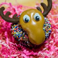 Chocolate Moosey Cupcake