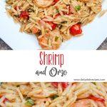 Shrimp and Orzo