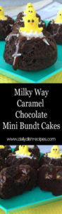 Milky Way Caramel Chocolate Mini Bundt Cakes