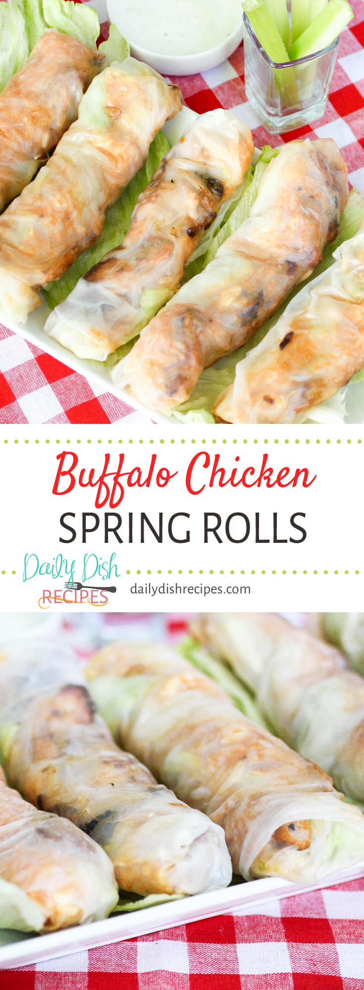 Who doesn't love Buffalo Chicken? Wrap it up in Spring Rolls and you get these incredible Buffalo Chicken Spring Rolls. A healthy, hearty lunch on it's own, but feel free to add a little ranch or blue cheese to cool it all off.