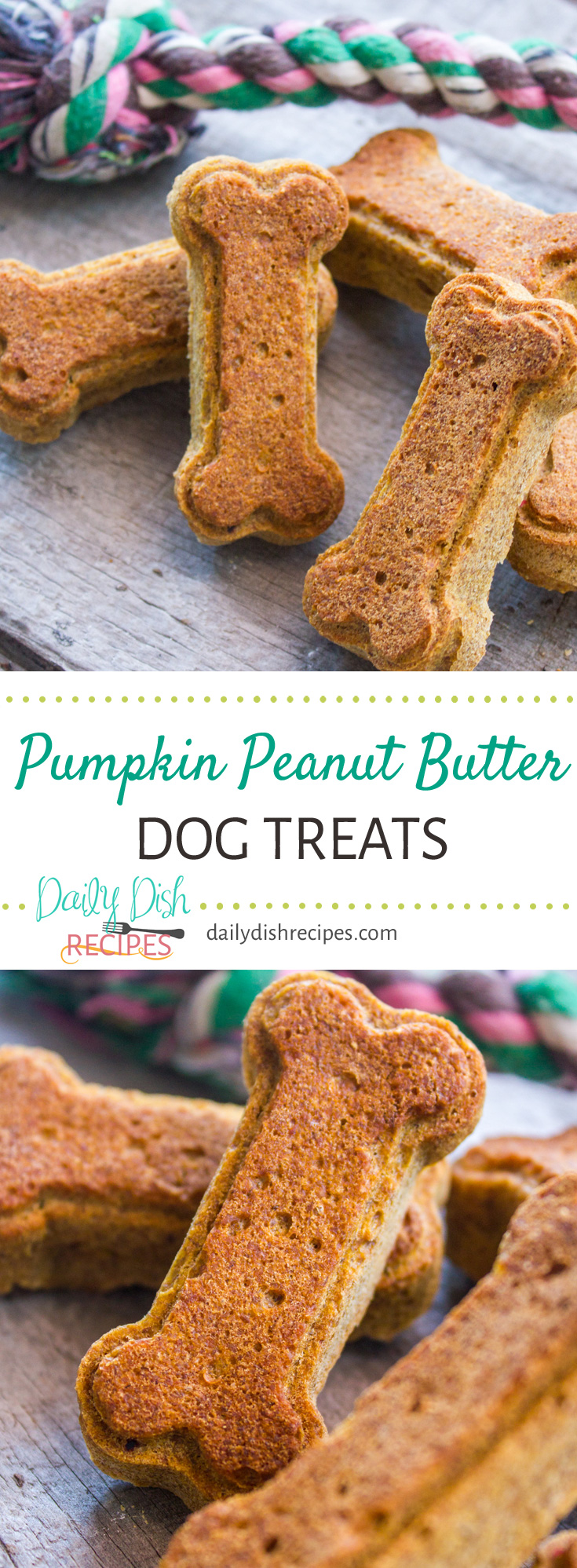Wheat-free Pumpkin Peanut Butter Dog Treats will make your pet smile. Dogs love them and I feel good about making them healthy treats! Your pets deserve their own homemade recipes too, plus these are SO easy!