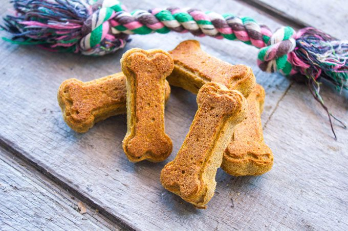 Pumpkin Peanut Butter Dog Treats - Wheat Free