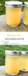 Honeysuckle Infusion Water