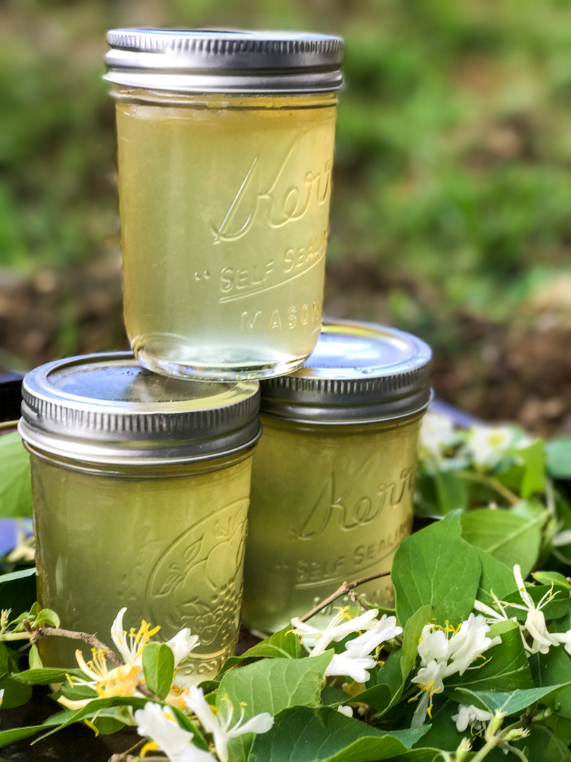 Honeysuckle Jelly