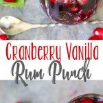 Cranberry Vanilla Rum Punch