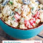Best Creamy Pasta Salad BBQ PIN