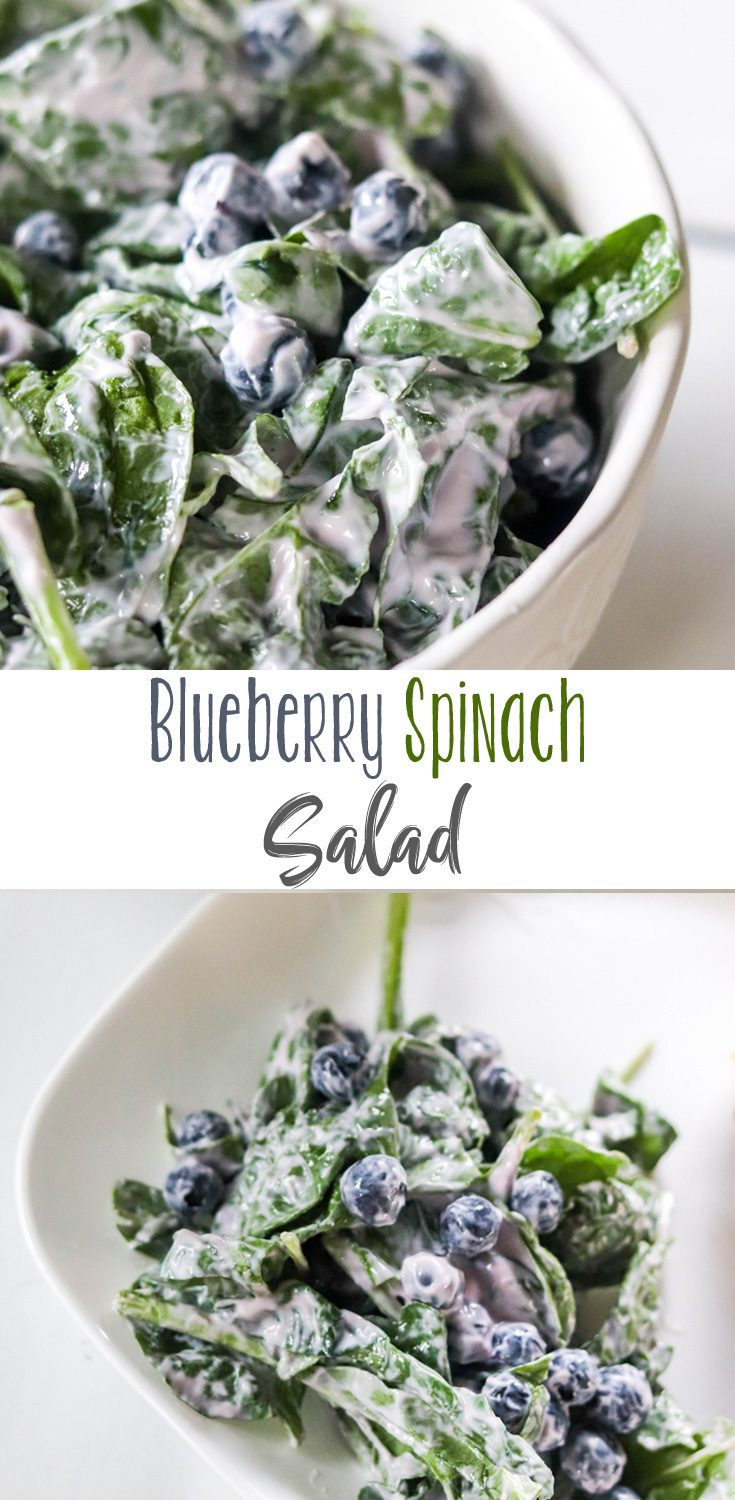 A simple summer salad starts with blended yogurt and fresh blueberries tossed with fresh spinach. Add anything you like after that, but enjoy this Easy Blueberry Spinach Salad just as it is.