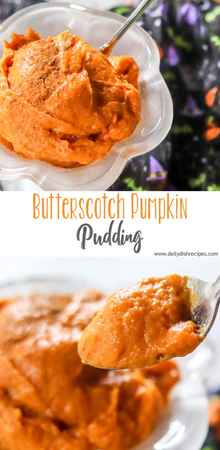 A creamy, homey treat that brings comfort in a little dish, this Butterscotch Pumpkin Pudding will make it feel like fall.