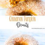 Cinnamon Pumpkin Donuts