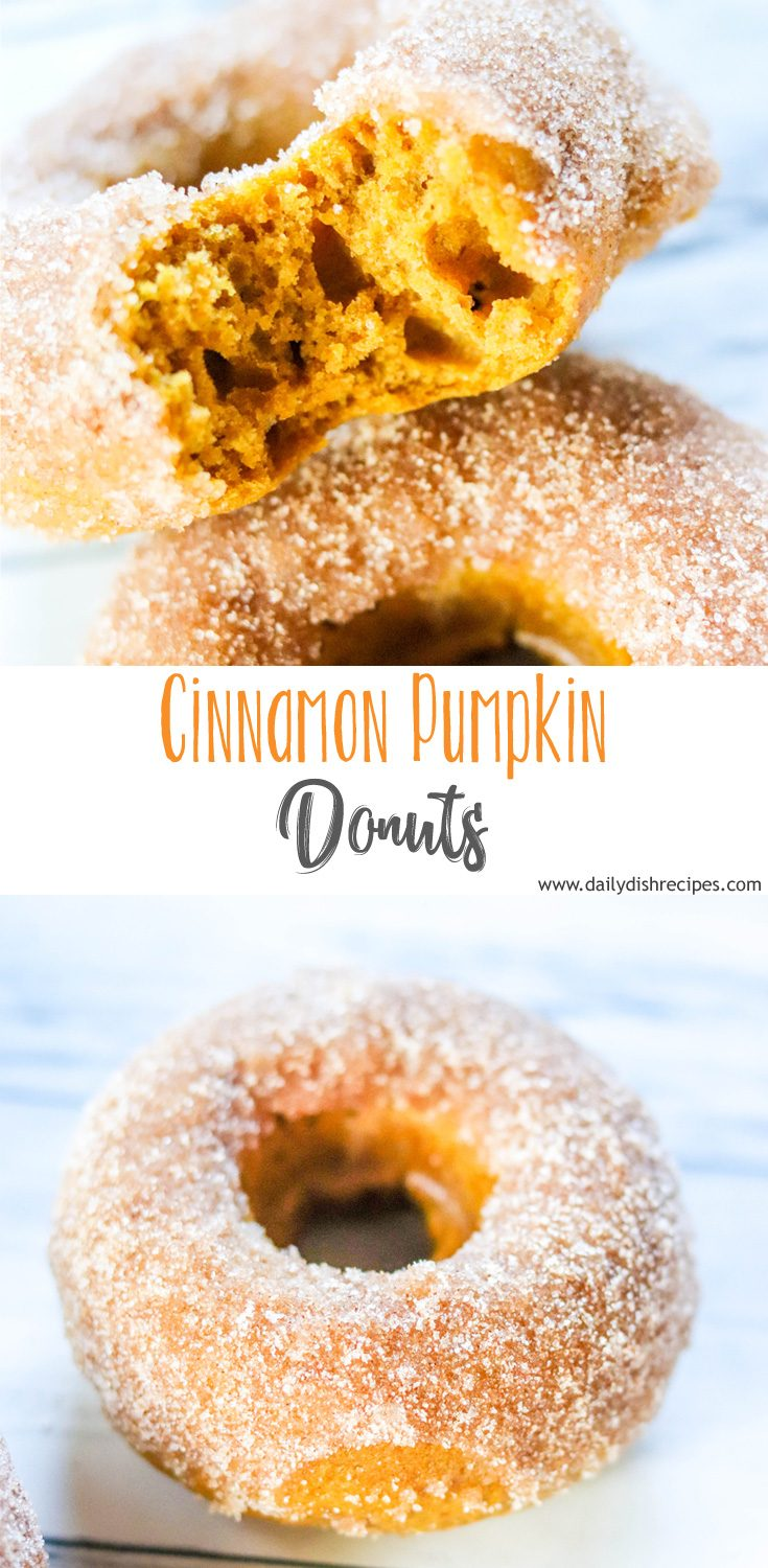 Every bite of these Cinnamon Pumpkin Donuts is like a delicious bite of Fall. Soft, nibbles of goodness filled with so much cinnamon and pumpkin flavor in every bite.