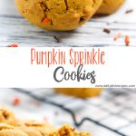 Pumpkin Sprinkle Cookies